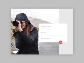 loginpress desktop login page Design